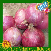 Hot sale 2015 Chinese Market Price Organic Red Onion for Sale Fresh Red Onion
