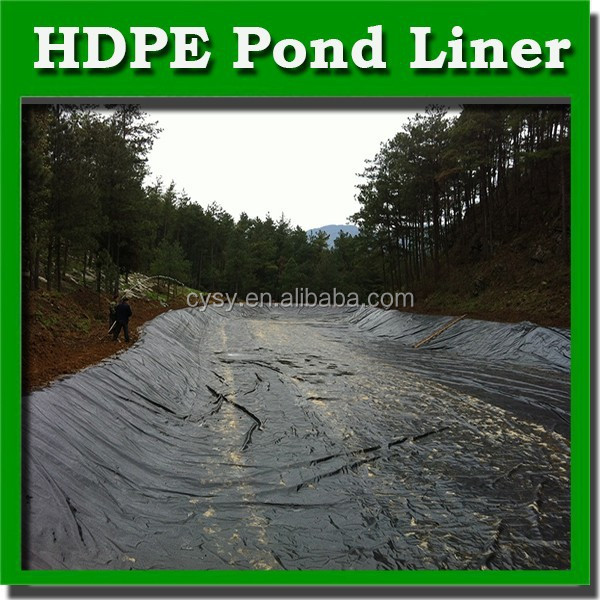 2mm Hdpe Geomembrane Cheap Price Fish Farm Pond Liner Hdpe