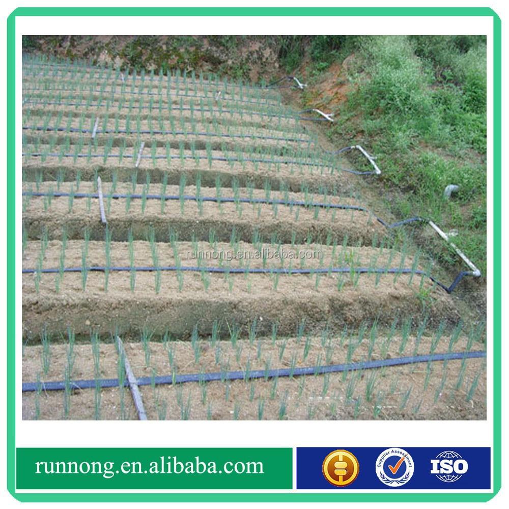 Flat Drip Hose Flat Drip Irrigation Pipe