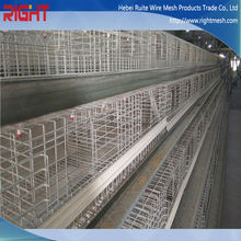 A Type H Type Galvanized Layer Cage Broiler Cage System African Farm Chicken Breeding System Chicken Cage