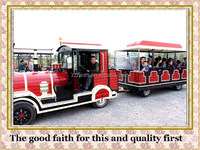 more than 10 years experience in trackless train rides battery trackless train