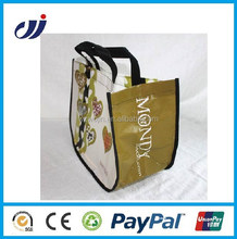 Most popular professional collapsible shopping bag