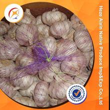 Fresh White Garlic Supplements