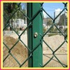 PVC cheap removable chain link fence