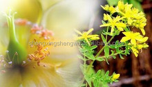 Chinese herbal medicine for depression st johns wort extract