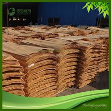 Different size of Kiln Dried Eucalyptus wood veneer