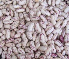 Light Spackled Kidney Beans, Cranberry Beans, Beans