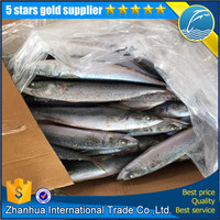 competitive price for mackerel fish process factory