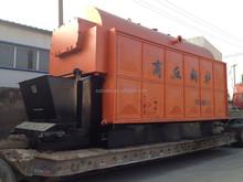 DZL automatic Coal feeding Steam Boiler