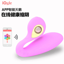 iOgle S100 APP control vibrator smart adult vibrator 6 vibration modes music motion and game control daily train health data