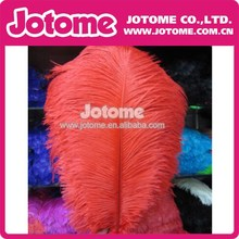 Hot Sale Fashion Wholesale Ostrich Feathers for Wedding/Party/Holiday Decoration