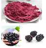 Manufacturer Supply Acai Berry Extract 4:1 10:1 25% Anthocyanin