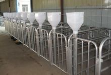 farm manufacturing cages for pig use