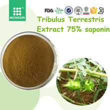 GMP+QS factory for low price Tribulus terrestris extract 75% saponin to reduce cost