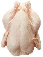 Live and frozen Chicken