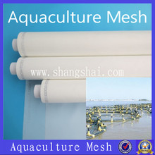 Clam breeding mesh