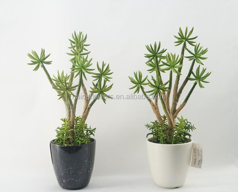 D coration int rieure artificielle coconut tree et plantes - Simulation decoration interieure ...