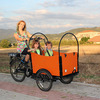 2015 hot sale adult electric bakfiets/cargo trike with CE