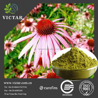 ISO Factory supply Echinacea extract