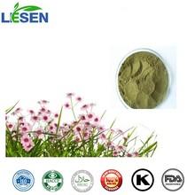 Best price 1%-4% chicoric acid Echinacea Purpurea Extract