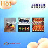 specialized egg candling equipment