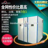 Constant temperature and humidity game chickens for sale incubator
