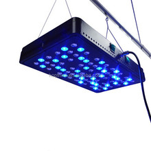 2015 New Model Apollo 8 5w 400 Watt Led Grow Light With Full Spectrum 11 Band with factory price