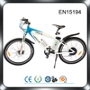 /product-gs/rear-wheel-brushless-electric-bicycle-motor-60305315134.html