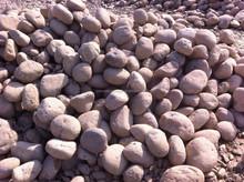 High Quality White garden Natural River Pebble Rock