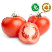 jiaduo fresh organic tomato
