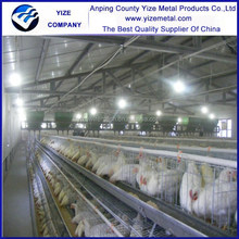 chicken use in farica market chicken cage