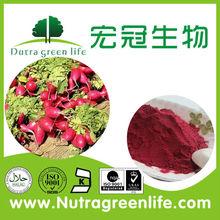 rojo de remolacha deshidratada en polvo de la raíz 40 msh