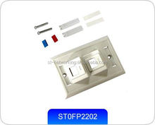 Faceplate 120 type 2 Port 45 degree
