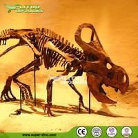 Dinosaur Musuem Life-size Dinosaur Fossil