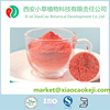 Freeze Dried Strawberry Fruit Powder For Food Additive