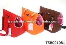 newest trendy promotional dog training treat bag