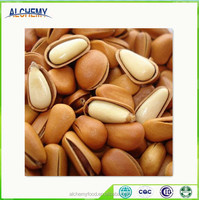 chinese cheap bulk pine nuts for sale