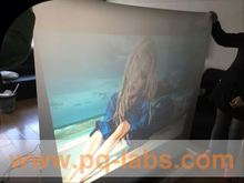 rear projector screen film supplier magic image