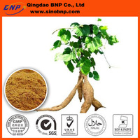 GMP ISO Pueraria Mirifica Extract flavones and Miroestrol