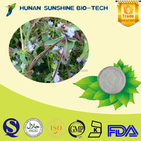 Pharmaceutical Raw Material Increase Strength and Endurance Cyanotis Arachnoidea Extract