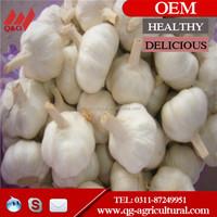 5.0 cm nature garlic with 23kg/mesh bag for Karachi Market
