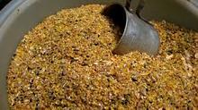 bulk chicken feed , poultry chicken feed , organic chicken feed