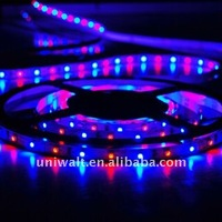 usb controlled led strip light ce rohs led strip light 5m led light strip