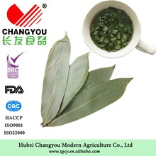 Best Selling Natural Dried Bamboo Leaf/Slimming Tea
