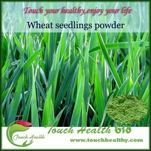 Natural organic food color Wheat grass powder extract
