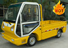 2 person New Condition china made in ce approved electric trucks ce cargo box