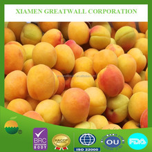 BRC certified frozen fresh apricot with best price