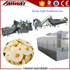 Cabinet hot air fruit dehydration plant mango and pineaple processing machines