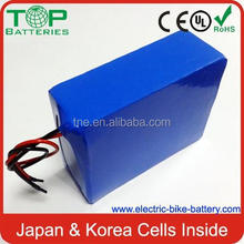 Low price top sell li ion ev battery pack