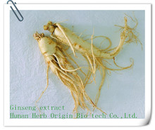 herbal extract Ginseng Extract,2015 new product 10%-80% Ginsenosides korean red panax ginseng extract